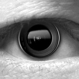 Big Brother Camera Security Icon